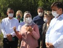BARıŞ DEMIRTAŞ - Kadın istihdamına büyük destek: Bin kovan hibe edilecek!