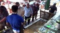 Batı Karadeniz'de Palamut Bollaştı, Fiyatlar Düştü