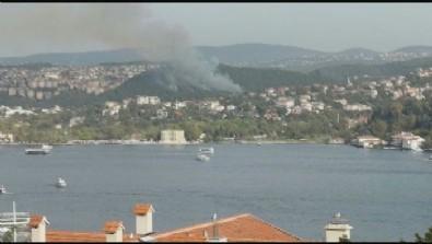 Beykoz'da orman yangını! Havadan müdahale başladı...