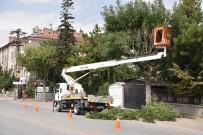 Selçuklu'da Ağaç Budama Çalışmaları Sürüyor