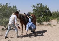 Kapadokya'da Ata Binen Güzel Sanatçı Attan Düştü