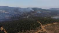Kastamonu'da Ormanlık Alanda Çıkan Yangın Söndürülemiyor