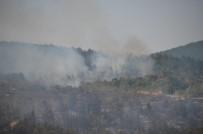 Kastamonu'daki Yangında Rüzgarın Da Etkisiyle Yeniden Alevler Yükseldi