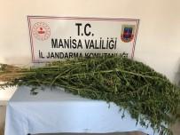 Sarıgöl'de Uyuşturucu Operasyonu