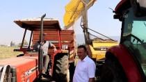 Adana'da Yer Fıstığı Hasadı Yüksek Verim Beklentisiyle Başladı
