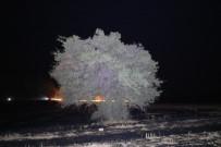 250 Dönüm Arazide Çıkan Yangın Korkuttu