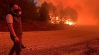 TARıM - Denizli'deki orman yangını ile ilgili Bakan Pakdemirli'den flaş açıklama