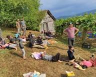 Fındık İşçilerini Taşıyan Traktör Devrildi Açıklaması 14 Yaralı