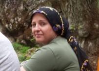Otomobilin Çarptığı 2 Çocuk Annesi Kadın Hayatını Kaybetti