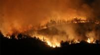 TARıM - Bakan Pakdemirli'den yangın açıklaması!