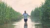 Suruç'ta 5 Bin Dönüm Tarım Arazisi Sular Altında Kaldı