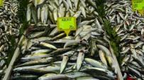 Çanakkale'de Hamsi Fiyatları 45 Lira Oldu