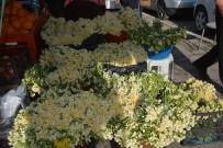 Kışta Baharı Yaşatan Nergis Çiçekleri Gelir Kapısı Oldu