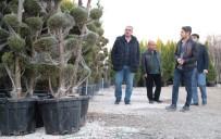 Eyyübiye'de Yeni Parklara Yeni Fidanlar