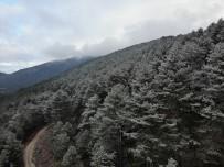 Kazdağları'nda Beklenen Kar Yağışı Başladı