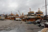 Sinoplu Balıkçılar Hamsi Ağından İstavrit Ağına Geçiyor