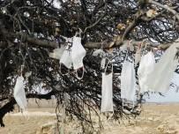 Ağaca Çaput Yerine Maske Bağlandı