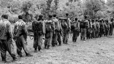 Bakan Soylu'dan PKK açıklaması!