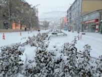 Bayburt Güne Karla Uyandı