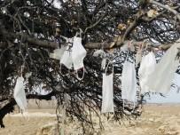 (Özel) Ağaca Çaput Yerine Maske Bağlandı