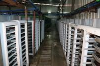 Türkiye'nin Balık Üretim Merkezi Açıklaması Fırat Nehri
