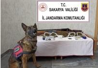 Sakarya'da Uyuşturucu Operasyonu Açıklaması 1 Gözaltı