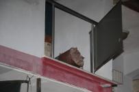 Soba Kovası Hazırlamak İsterken İkinci Kattan Beton Zemine Çakıldı