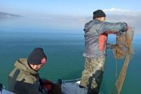 Türkiye'de Kerevit Üretiminin Yüzde 80'İ Eğirdir Gölü'nden Karşılanıyor