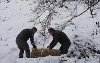 Artvin'de Çetin Kış Şartları Nedeniyle Yaban Hayvanları İçin Doğaya Yem Bırakıldı