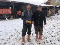 Kar Altında El Ele Hayvanlarına Böyle Bakıyorlar