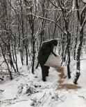 Karlı Günlerde Yaban Hayvanları İçin Doğaya 200 Kilogram Yem Bırakıldı