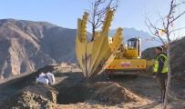 Türkiye'nin En Fazla Ağaç Taşıma İşlemi Yusufeli Yeni Yerleşim Yerinde Gerçekleşti