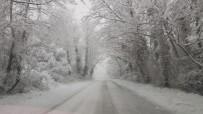 Ağaç Tüneller Kar Güzelliği İle Mest Ediyor