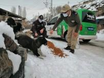 Kars'ta Polis, Sokak Hayvanlarına Yiyecek Bıraktı