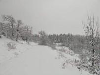 Kastamonu'da Köylerin Yarısının Yolu Kar Yağışı Nedeniyle Kapandı