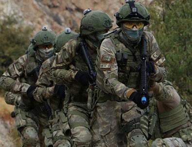Barış Pınarı bölgesine sızmaya çalışan teröristler artık yok!