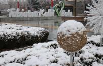Bolu, Türkiye'nin En Soğuk İli Oldu