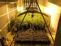 Evine Kurduğu Uyuşturucu Tarlasını Güneş Panelleriyle Isıtmış
