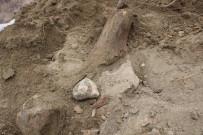 Köylüler Su Ararken Buldu, Mamut Fosili Olabilir
