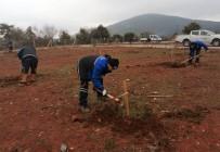 Muğla Büyükşehir'den 'Hortikültürel Terapi' Alanı