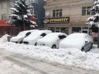 Sarıkamış'ta Kar Yağışı Hayatı Olumsuz Etkiledi