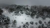 Yaylada Snowboard Heyecanı