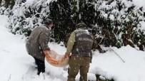 Zonguldak'ta Yaban Hayvanları İçin Doğaya Yem Bırakıldı