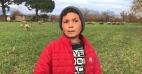 12 Yaşındaki Küçük Çoban Videolarındaki Diyalogları İle Sosyal Medyanın Yeni Fenomeni Oldu