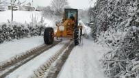 Altınova'da Karla Mücadele Devam Ediyor