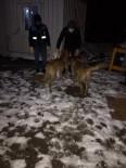 Donmak Üzere Olan Köpek Ve Yavrularını Diyarbakır Büyükşehir Belediyesi Ekipleri Kurtardı