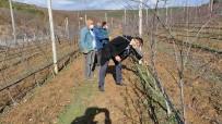 Bilecik İl Tarım Ve Orman Müdürlüğü'nün Haftalık Çalışmaları