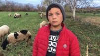 Küçük Çoban Videolarındaki Diyalogları İle Sosyal Medyanın Yeni Fenomeni Oldu