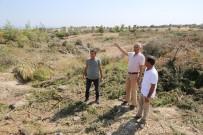 Tarhan Açıklaması 'Doğa Katliamına İzin Vermeyeceğiz'