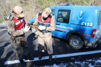 Yaralı Şahini Donmak Üzereyken Jandarma Kurtardı